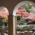 大山崎山荘美術館 11月28日