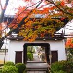 元慶寺 11月28日