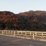 嵐山 11月29日
