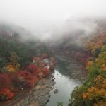嵐山公園 11月29日