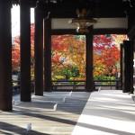 妙顕寺 11月29日