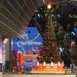 京都駅 クリスマスツリー 11月