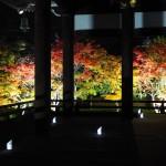 妙顕寺 ライトアップ 11月