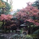 京都平安ホテル 11月30日