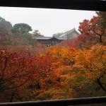 東福寺 臥雲橋