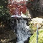 鳴滝 12月1日