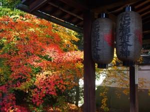 京都御苑 宗像神社内にて