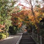 粟田神社 12月3日