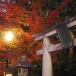 八坂神社 12月3日