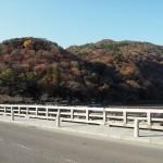 嵐山 12月3日