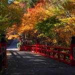 今熊野観音寺 12月3日