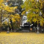 三栖神社 12月4日