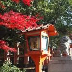 八坂神社 12月4日