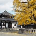 西本願寺 12月5日