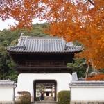 興聖寺の琴坂 12月9日