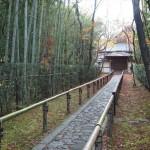大徳寺 高桐院 12月