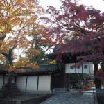 今宮神社の東門