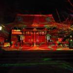 嵐山花灯路 法輪寺 12月