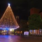 同志社大学 クリスマスツリー