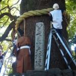 新熊野神社 綱掛祭 12月