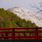 清滝 渡猿橋と雪山