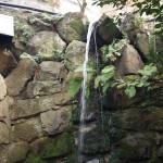 音羽の滝の下 清水寺