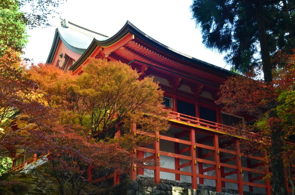 比叡山 横川中堂の紅葉 | 京都 ...