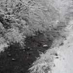 大原の雪景色 2月9日