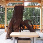 伏見稲荷大社 根上りの松
