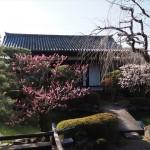 東寺 小子房
