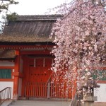 吉田神社 3月25日