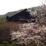 大山崎山荘美術館 3月28日