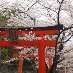 竹中稲荷神社 3月29日