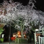 水火天満宮 ライトアップ 3月