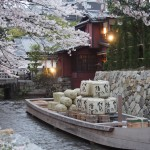 高瀬川一之舟入 4月4日