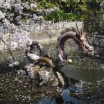 壬生寺 4月