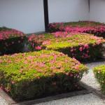 東福寺 本坊庭園