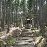 賀茂神社 6月