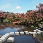 梅小路公園 朱雀の庭 8月