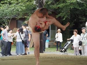 松尾大社 八朔祭 赤ちゃん土俵入り