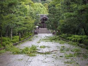 台風21号の被害 大谷祖廟