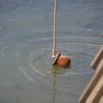 宇治茶まつり 名水汲み上の儀