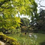 平安神宮 10月