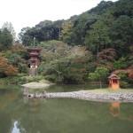 浄瑠璃寺 11月