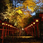 貴船神社 ライトアップ 11月