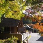 日向大神宮 11月