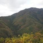 愛宕山 11月