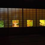 雲龍院 ライトアップ 11月