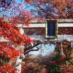 鷺森神社 12月
