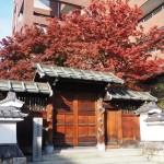 三井越後屋京本店記念庭園 12月